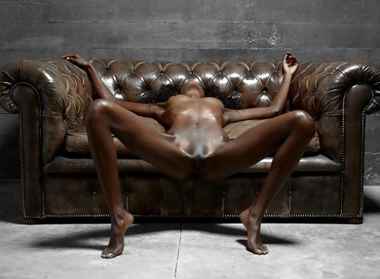 Schwarze Ludern in gratis Bildern - Bild 9